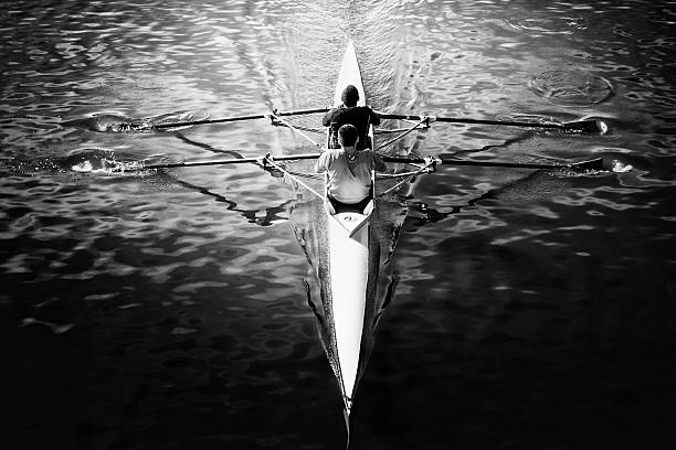 Double scull stock photo