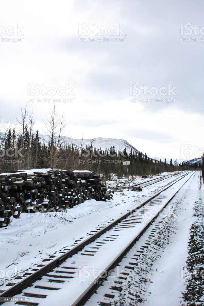 double train tracks in snow foto stock royalty-free