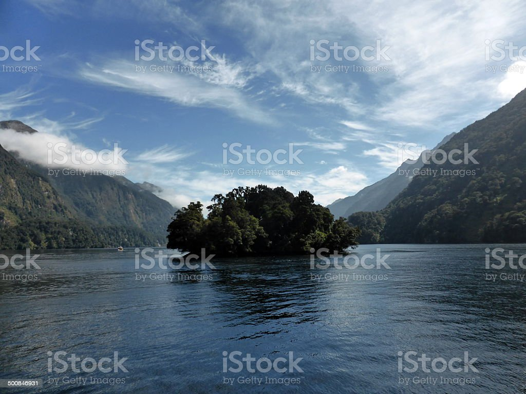 Doubtful Sound Island stock photo