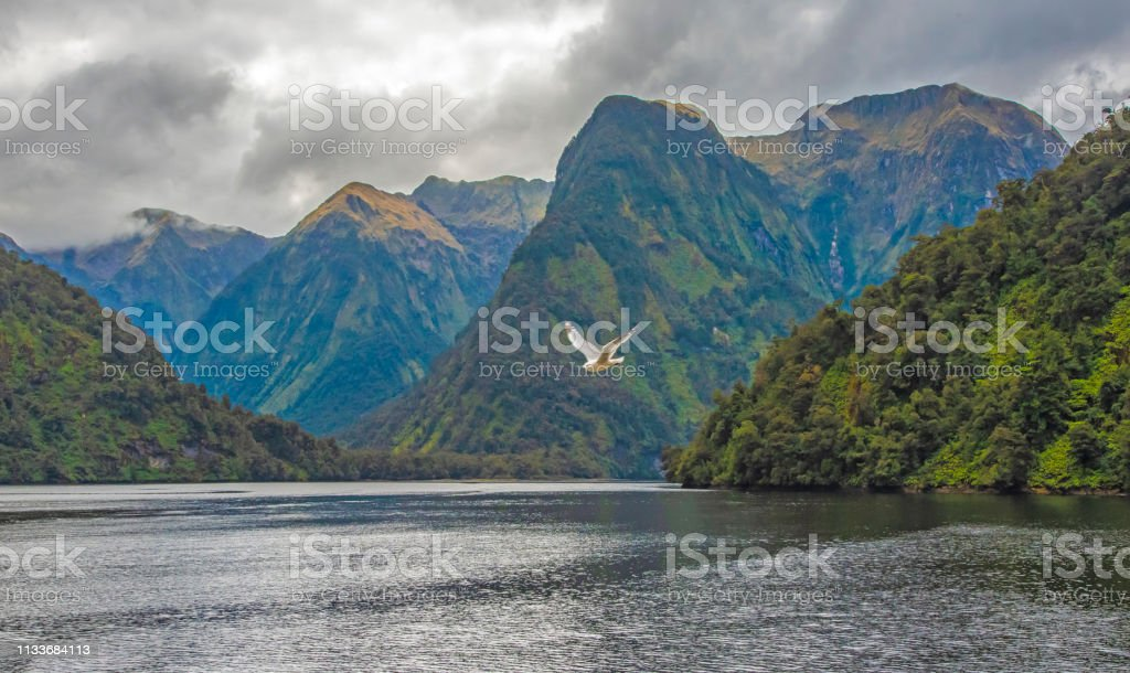 Doubtful Sound, South Island, New Zealand stock photo