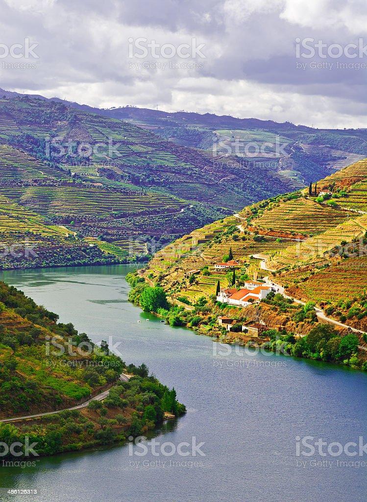 Douro stock photo