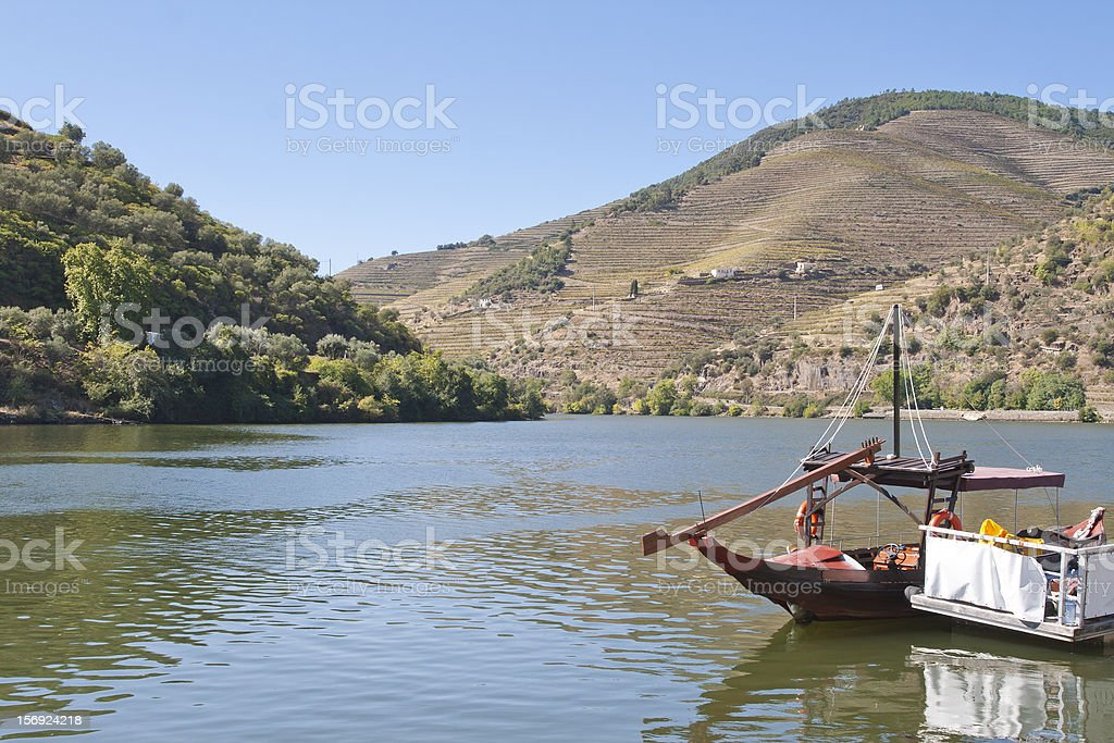 Douro region royalty-free stock photo