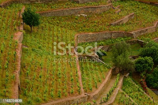 Images of the Douro River and valley, Portugal