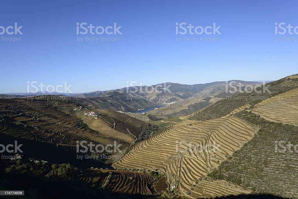 Douro Valley and port vineyards royalty-free stock photo
