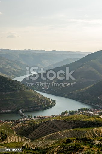 Douro river and valley at sunset during the harvest season. Casal de Loivos viewpoint.