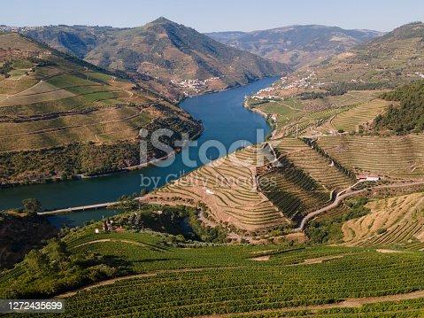 Douro Valley near Peso da Régua