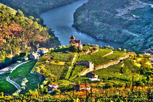 Landscape in Douro Valley, Portugal