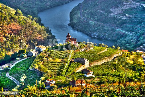 Landscape in Douro Valley, Portugal