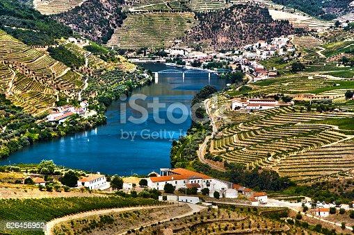 Ladscape in Douro Valley near Pinhão