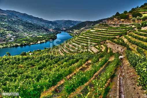 Ladscape in Douro Valley-Barragem do Pocinho-more files in my portfolio.Taken With a Full Frame Digital Camara