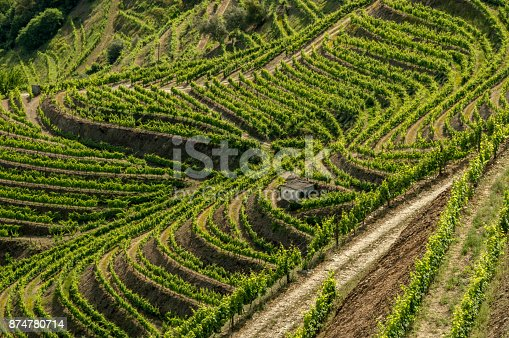A Unesco World Heritage site since 2001, the Douro Valley is a majestic wilderness, one of the oldest demarcated wine regions in the world. Nice white coloured villages are situated between the vineyards. In this picture a shed is situated between the vineyards, showing an interesting geometrical pattern
