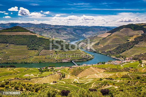 View Of Vineyards In Douro Valley From Double Viewpoint De Loivos - Vila Real District, Portugal, Europe
