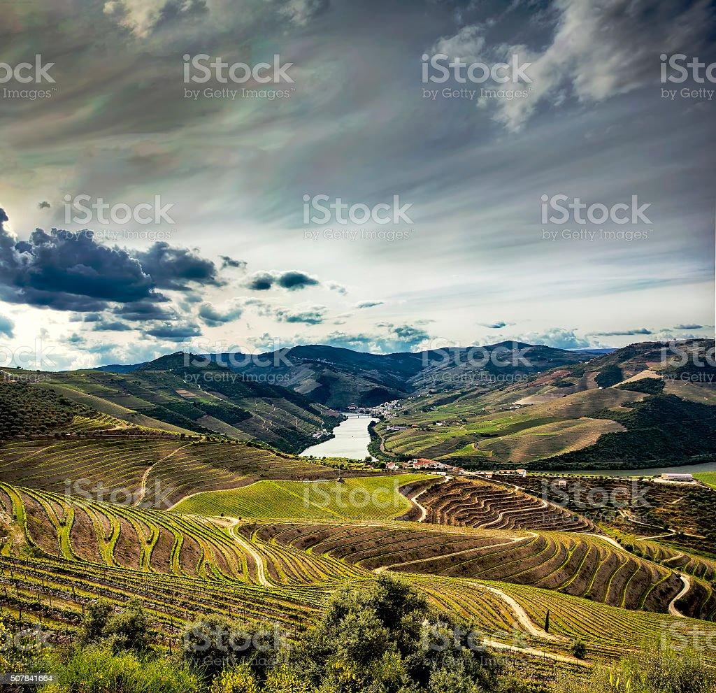 Douro Vineyards stock photo