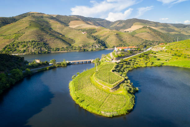 Douro wine valley region drone aerial view of s shape bend river in Quinta do Tedo at sunset, in Portugal Douro wine valley region drone aerial view of s shape bend river in Quinta do Tedo at sunset, in Portugal duero stock pictures, royalty-free photos & images