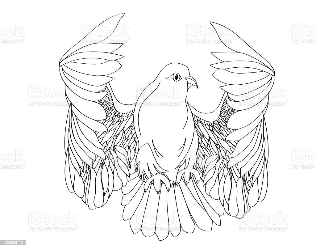 Dove in free flight. Isolated vector on white background stock photo