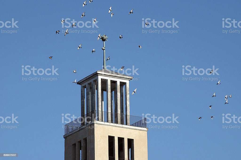 Doves flying around a clock tower royalty-free stock photo
