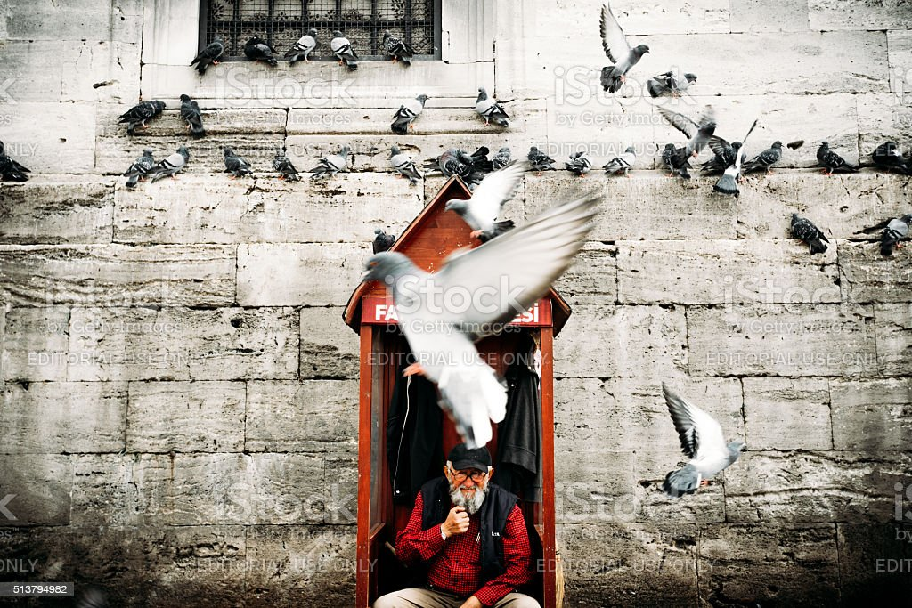 Doves in front of Yeni Cami Istanbul stock photo