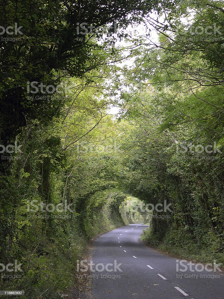 Down an Irish country road royalty-free stock photo