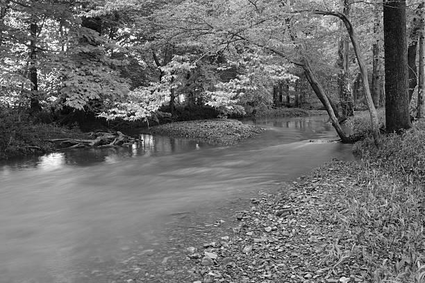 Down by the rocky stream monochrome stock photo
