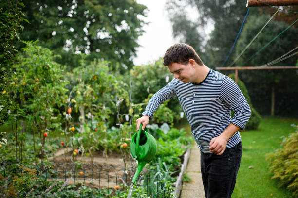 Down syndrome adult man watering plants outdoors in vegetable garden, gardening concept. stock photo