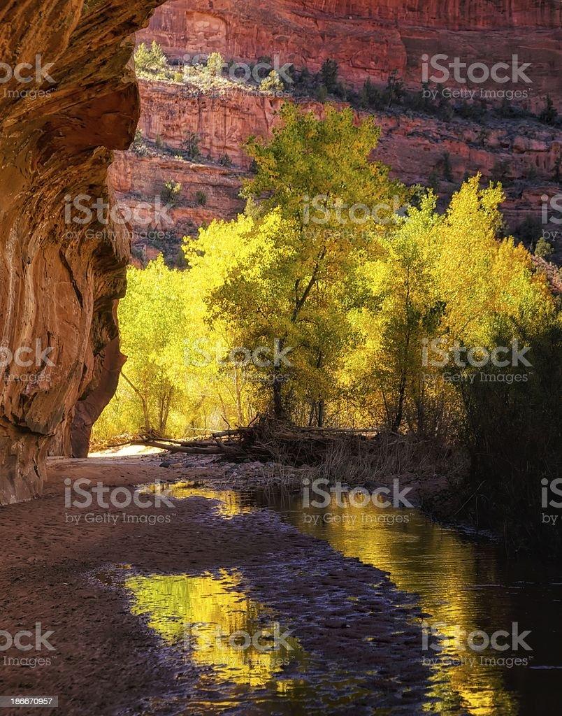 Down the Autumn Creek stock photo