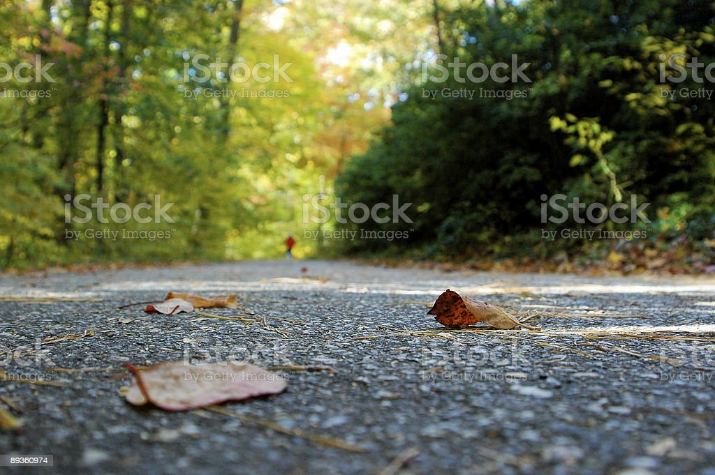 Down the Path of Life royalty-free stock photo