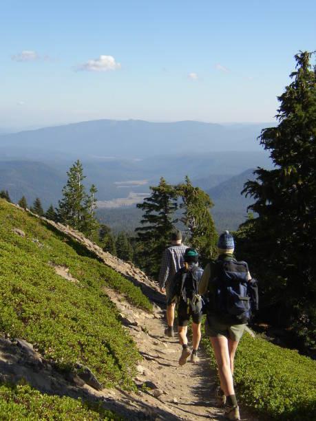 auf dem trail - pacific crest trail stock-fotos und bilder