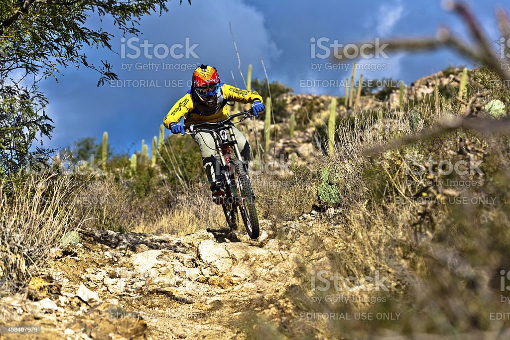 downhill bike rider  riding down the trail stock photo