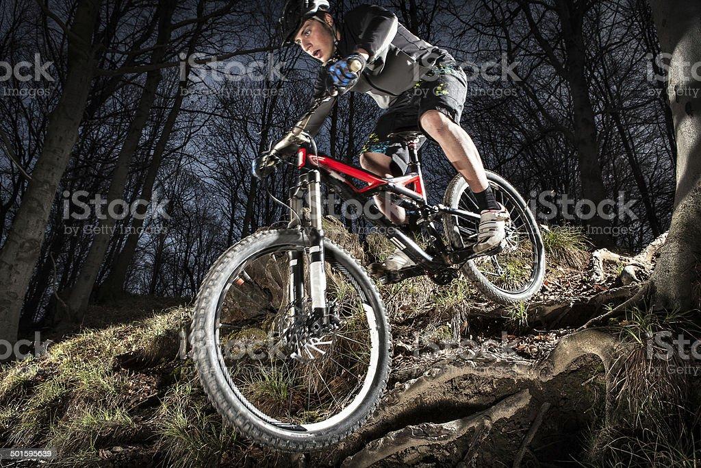 Downhill enduro mountain bike jump in the woods. stock photo