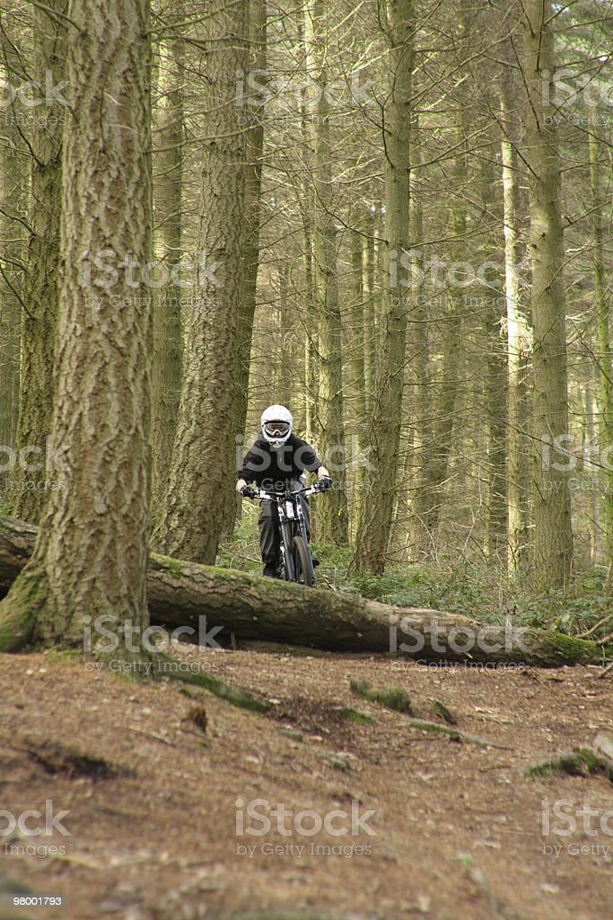 Downhill Mountain Bike royalty free stockfoto