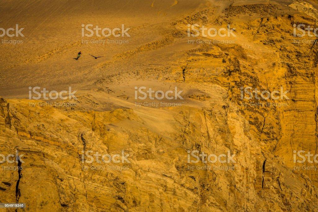 Downhill mountain biker freeriding in Paracas, Peru. stock photo