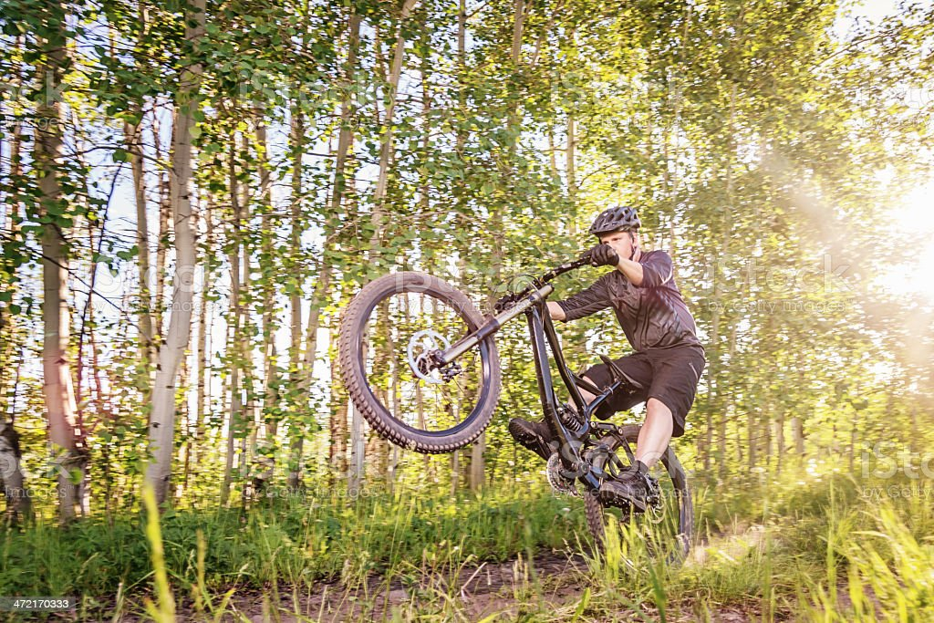 Downhill Mountain Biking in Sunny Forest royalty-free stock photo