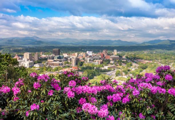 Flores de horizonte de Asheville céntricos en primavera - foto de stock