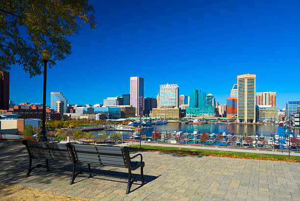 Downtown Baltimore elevated skyline view from a Park Downtown Baltimore with Inner Harbor view from Federal Hill Park, with a bench, lamp post, and tree. inner harbor baltimore stock pictures, royalty-free photos & images
