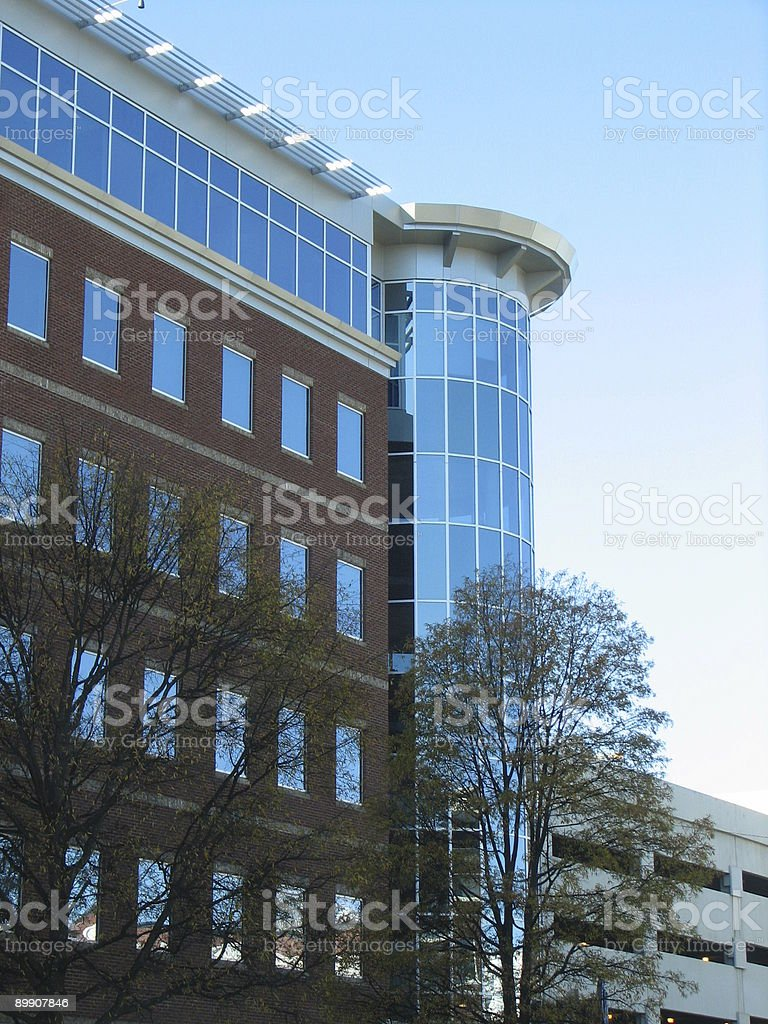Downtown Building royalty-free stock photo