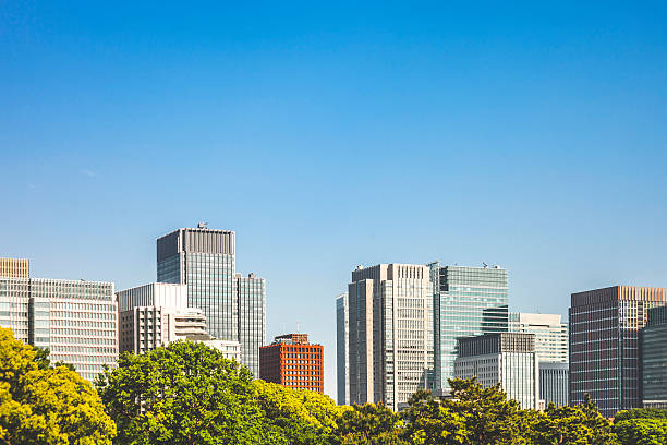 downtown buildings behind trees. - generic location stock pictures, royalty-free photos & images
