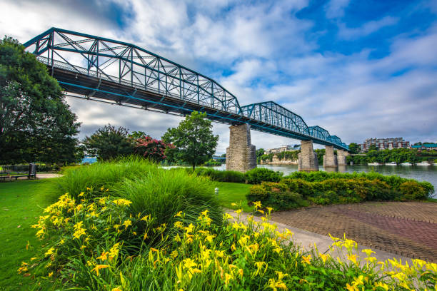 Downtown Chattanooga Tennessee TN USA Downtown Chattanooga Tennessee TN Coolidge Park and Market Street Bridge. chattanooga stock pictures, royalty-free photos & images