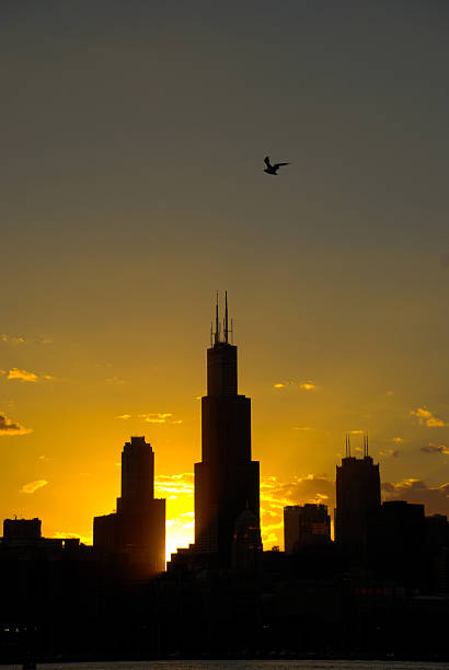 Downtown Chicago, sunset stock photo