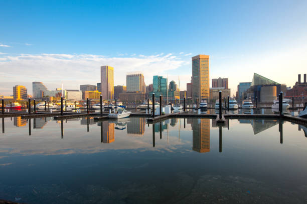 Downtown city skyline, Inner Harbor and marina in Baltimore Downtown city skyline, Inner Harbor and marina, Baltimore, Maryland, USA baltimore maryland stock pictures, royalty-free photos & images