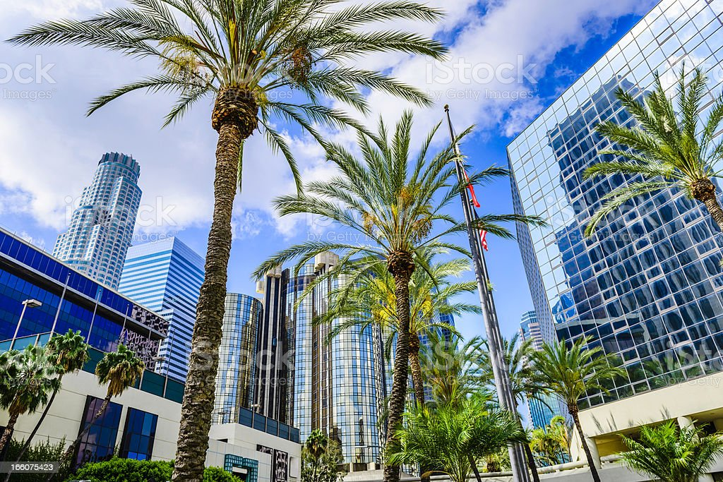 Downtown Los Angeles California skyline cityscape skyscrapers and palm trees stock photo