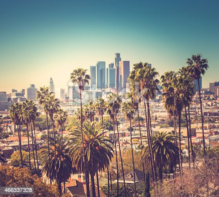 Downtown Los Angeles With Palm Trees In The Foreground