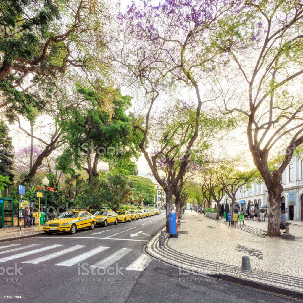 Downtown of Funchal, Madeira royalty-free stock photo