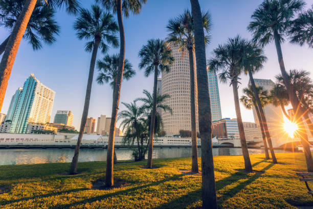 Downtown of Tampa stock photo
