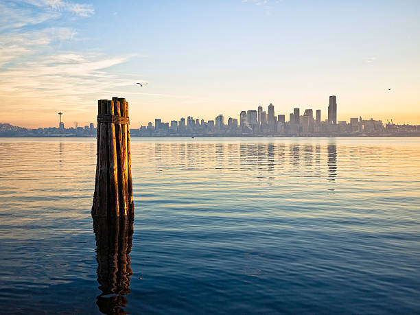 Downtown Seattle Skyline  puget sound stock pictures, royalty-free photos & images