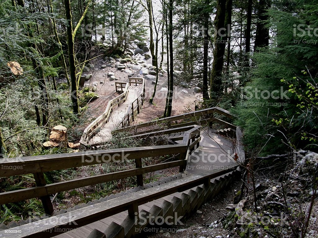 Downward To The River royalty-free stock photo