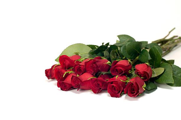 Dozen red roses isolated on white picture id121896987?b=1&k=6&m=121896987&s=612x612&w=0&h=g6nb9h4tg9pffz1ianiuiyzcwcu0adbnuayd wfprvi=