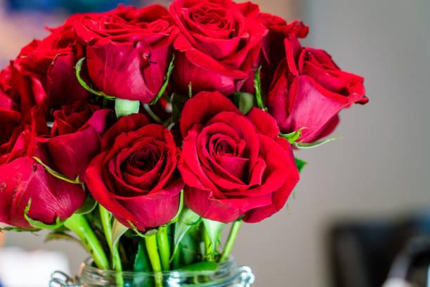 Dozen Red Roses on Valentine's Day stock photo