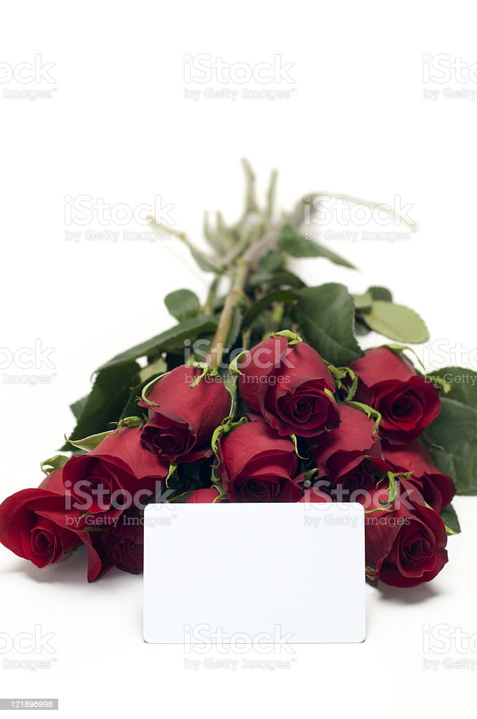 Dozen Red Roses on White with Blank Gift Card royalty-free stock photo