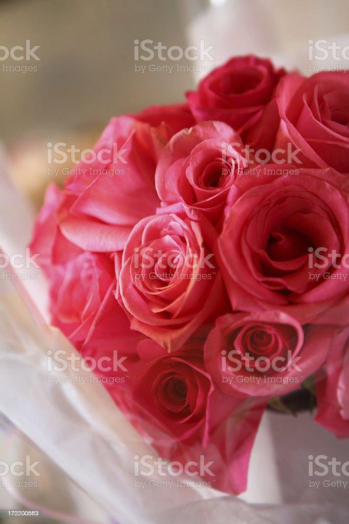 Dozen Roses royalty-free stock photo