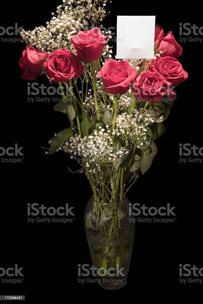 Dozen Roses royalty-free stock photo